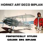 HORNET ART DECO BIPLAN - ONE SEAT STYLISH PLANE -STEEL-ALUM-FABRIC ROTAX503-582