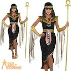 Ladies Cleopatra Costume Egyptian Queen Greek Goddess Adults Fancy Dress Outfit
