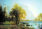 Albert Bierstadt Oil Painting Repro Classical Landscape Living Room Wall Canvas