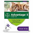 Flea Prevention for LARGE Cats Bayer Advantage II, Over 9 lbs, 2 Doses