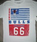 Chicago Bulls NBA Hardwood Classics T Shirt_ New with tags_ Licensed Merchandise