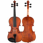 Scherl & Roth Galliard Student 1/2 Violin Outfit With Case, Rosin And Bow
