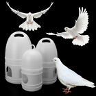 Plastic Bird Feeder Automatic Food Water Feeder Cage for Pigeon Nice Fashion