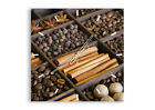 WALL CLOCK - CLOCK ON GLASS Spices coffee Cinnamon - 12 SHAPES - UK 2311