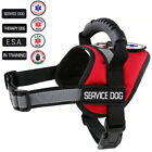 Service Dog - ESA Dog - Therapy Dog Vest Patches Harness (S) ALL ACCESS CANINE™