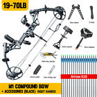 "Topoint M1 Compound Bow 19-30"" 19-70lb Right Hand Hunting Archery Target USA"