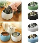 No Slip Stainless Steel Elevated Stand Tilted Feeder 400ml Cat Bowl Raised Nice
