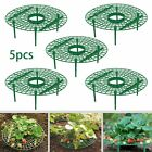 Plant Plastic Tool Strawberry Growing Circle Support Rack Farming Harvest Frame