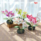 Artificial Butterfly Orchid Flower Plants In Pot Fake Home Decor Wedding Party