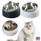 Cat Bowl Raised No Slip Stainless-Steel Elevated Stand Tilted Feeder Bowls NEW