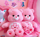 Care Bears Cherry Blossom Pink New Official Licensed Plush Care Bear Doll 10in