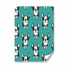 A2 - Boston Terrier Dog Puppy Print Poster 42X59.4cm280gsm #16613