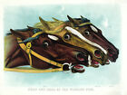 3851 Head & Head Horse racing POSTER.Powerful Graphic Design. Art Decorative