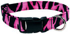 Pink Zebra Designer Dog Collar
