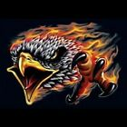 SCREAMING EAGLE FLAMES RIDERS BIKERS T SHIRT M TO 6X  BLACK OR GRAY