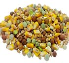 PIGEON - (500g - 20kg) - Poultry Bird Pea Maple Seed vf Pet Food bp PawMits Feed