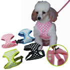 New Pet Puppy Dog Adjustable Harness Collar Safety Strap Vest Leash 5 Size XS~XL