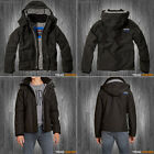 Hollister by Abercrombie - Mens Feece Lining All Weather Jacket - S M L XL NEW!