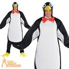 Adult Penguin Pal Costume Happy Feet Bird Fancy Dress Outfit STD & Plus Size