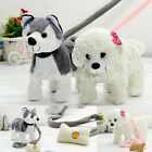 Musical Singing Dancing Walking Electronic Moving Cute Dog Puppy Toy Kids Gift