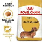ROYAL CANIN® Dachshund Adult Dry Dog Food