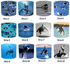 Killer Whale Lampshades Ideal To Match Killer Whale Duvets Killer Whale Wall Art