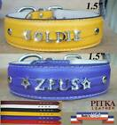 Leather Collars for Big Dogs with Bling Name - Luxury Leather Dog Collars - XL
