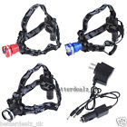 3 Colors 800LM Q5 LED Headlamp Headlight Head Torch Lamp Light+AC/Car Charger