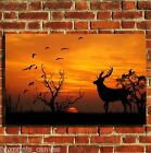 SUNSET WILDLIFE COOL CANVAS WALL ART BOX PRINT PICTURE SMALL/MEDIUM/LARGE