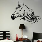 HORSE HEAD RIDING STABLE BOX HOME WALL ART STICKER kids vinyl stencil new HO2