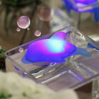 Baby Kids Bath LED Dolphin Light Lamp Lovely Toy Colorful Flashing Changing MC