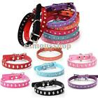 XXS/XS/S/M Size Ellipse Diamond Studded Leather For Dog Collar Pet Supply HOT