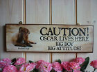 PERSONALISED BULLMASTIFF SIGN CAUTION SIGN WARNING SIGN HOUSE PLAQUE DOG SIGNS