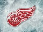 Detroit Red Wings Logo Ice hockey Sport Wall Print POSTER $17.95 USD on eBay