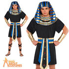 Adult Male Egyptian Costume Mens Pharaoh King Fancy Dress Outfit New