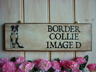 PERSONALISED PET MEMORIAL SIGN GARDEN SIGN BORDER COLLIE IN MEMORY REMEMBRANCE