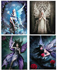 Anne Stokes Mystical Fantasy Fairies Canvas/Prints - Fairy Collection- 7 Designs