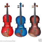 Zest Student Violin's in Red, Blue and Purple burst (VIOLIN ONLY)