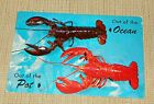 Maine Lobster Before & After - Out of the Ocean, Out of the Pot - Posted in 1961