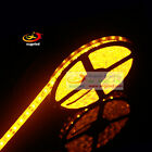 5M 5050 Yellow 10mm Width SMD 300LED Flexible Tape Rope Strip 12V IP20 IP65 IP67