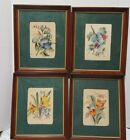 Vintage WATERCOLORS Flowers Set 4 signed Fred Sheane Michaelian & Kohlberg NY