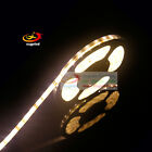 5M 3014 Warm White 5/8mm Width 300/600LEDs Flexible Tape Rope Strip IP20 IP65/67