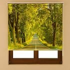 Nature Window Blackout Transparent Fabric Roller Blind Shades Various Size