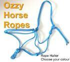 Ozzy Horse Ropes  ROPE HALTER sizes Mini - Draft
