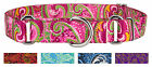 Country Brook Petz™ Martingale Dog Collar - Paisley Collection