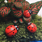 10 x Hanging Decorative Ladybirds Garden Wall Ornament Home Outdoor  FO