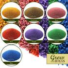 Micro & Chroma Colourful Gravel Garden Aquarium and Terrariums 1-2MM | 500G