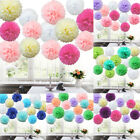40 / 9 Mixed Tissue Paper Pompoms Pom Poms Hanging Garland Wedding Party Decor