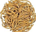 DRIED MEALWORMS - (50g - 12.5kg) - Wildlife Reptile Animal Feed vf Pet doby Food