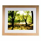 "Wimbledon common 20""x16"" Premium Framed Print"